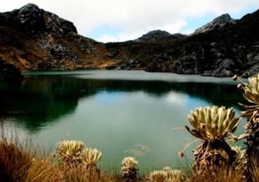 Eco Oro afirma que seguirá con proyecto de explotación en Santurbán